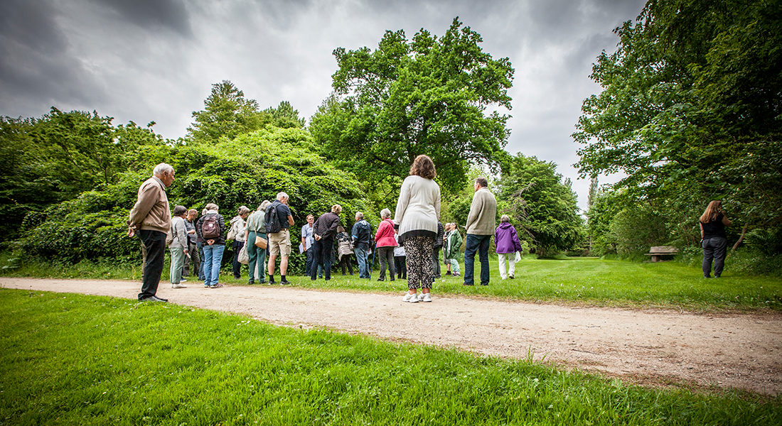 The Arboretum in Hørsholm-guided tour