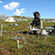 Read more about: Plant gasses can counteract arctic climate change