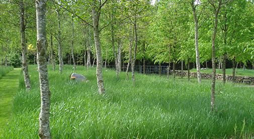 Sejs-Svejbæk Kirkegård