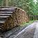 Læs mere om: Danmarks Skovstatistik for 2016 er nu på gaden
