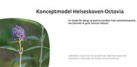 Konceptmodel for Helseskoven Octovia